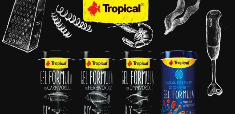 +++NEW Tropical GEL Formula+++