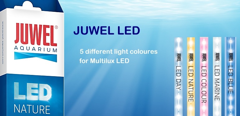 ++++NEW JUWEL LED for Multilux+++++