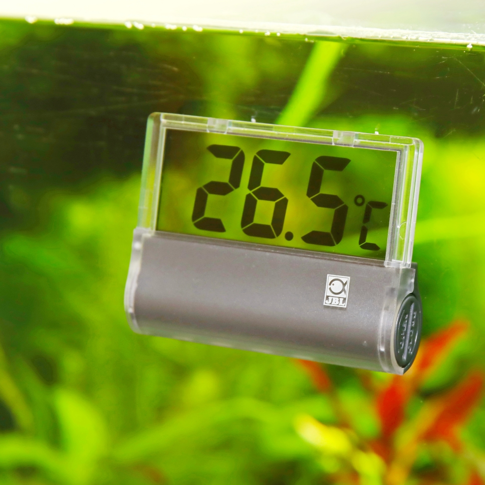 Shop JBL Hang-On Aquarium Thermometer S