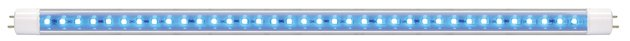Shop Arcadia T8 LED Lamp Marine Blue