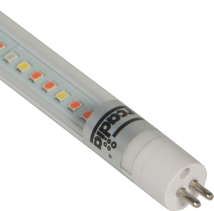 Shop Arcadia T5 LED Freshwater Pro -Fluorescent bulb replacement-