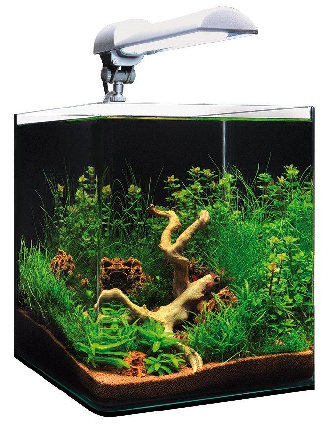 Preise Dennerle Basic NanoCube 20 Liter