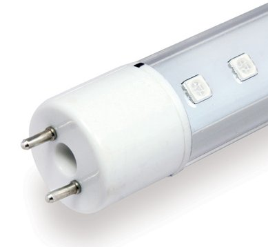 Shop Arcadia T8 LED Lamp Marine White