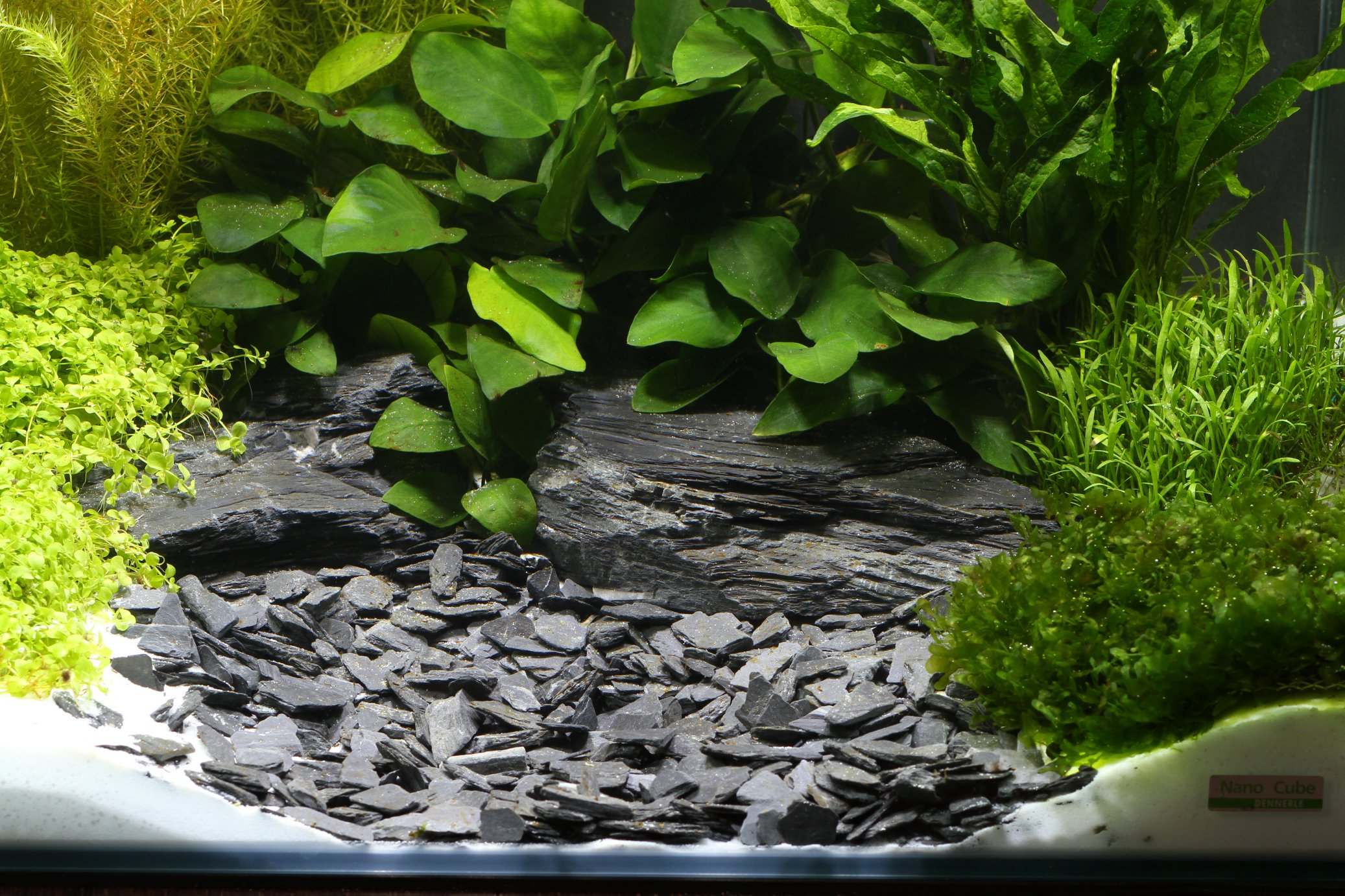 Dennerle baikal natural gravel plantahunter for Gravier pour aquarium