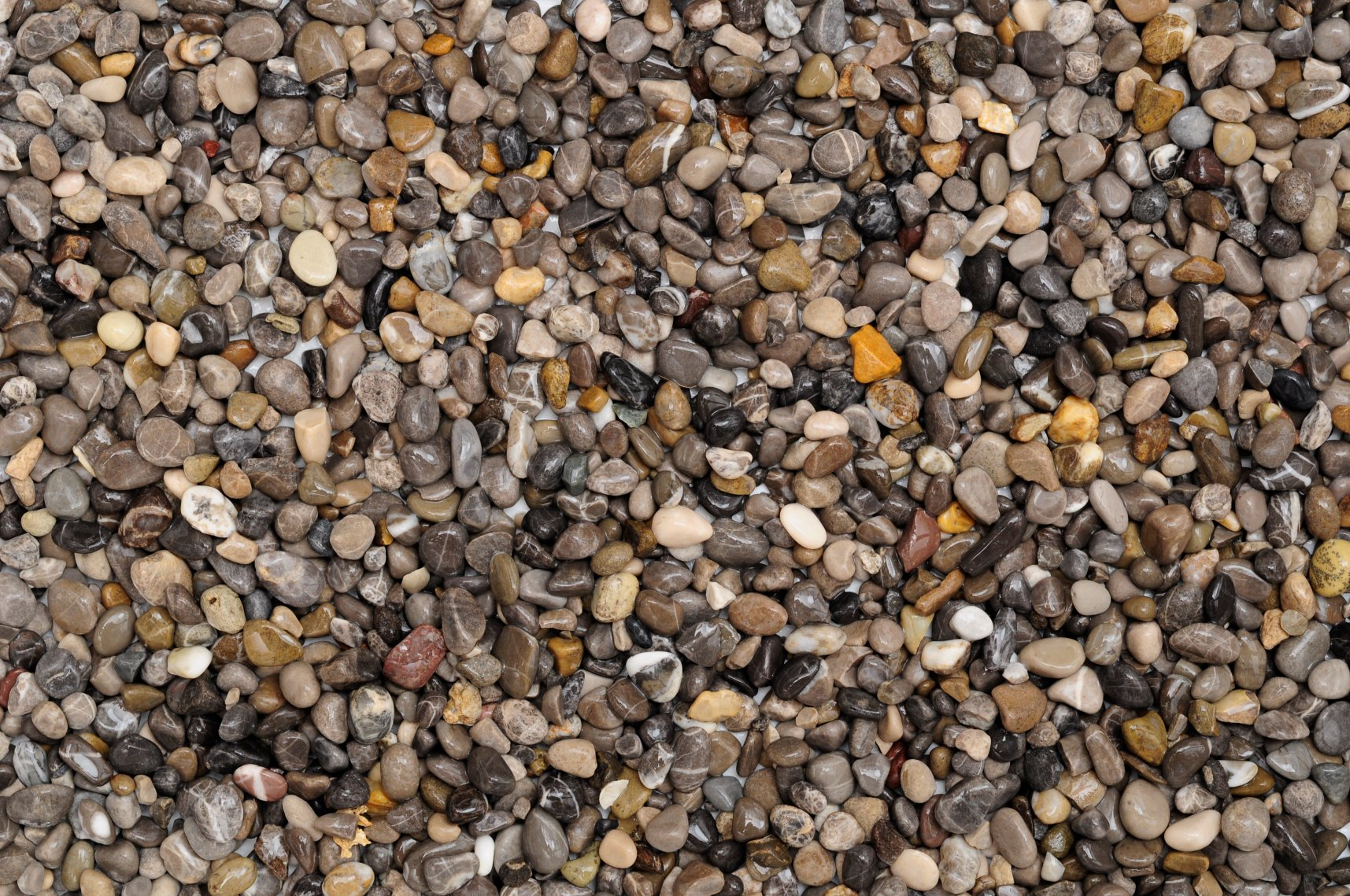 Shop Dennerle River Natural Gravel Plantahunter