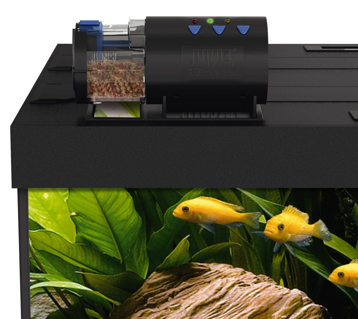 instructions eheim x awesome feeder photo of automatic best youtube fish