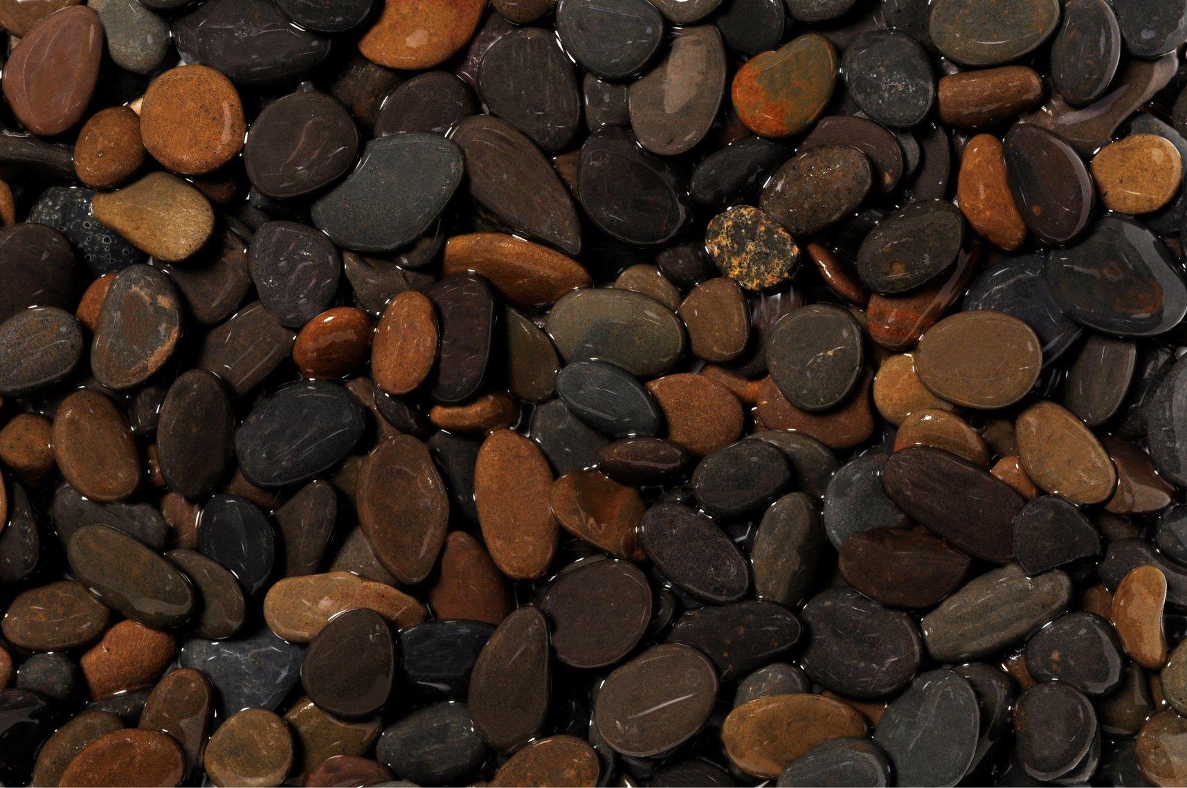Preise Dennerle Naturkies Yukon Plantahunter