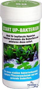 Preis Start Up - Bakterien