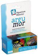 Aquarium M�nster Argumor