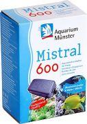 Aquarium Münster Mistral 600