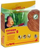 sera Catappa Leaves -Tropical almond leaves-